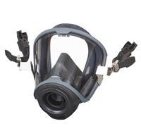 Masque complet MSA© G1 (casque-masque-combination) - L