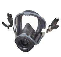 Masque complet MSA© G1 (casque-masque-combination) - S